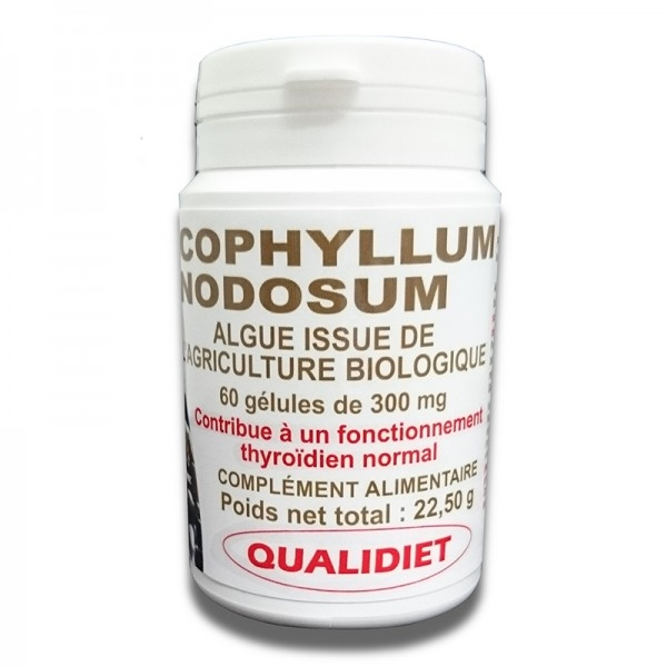 Algue Ascophyllum - Iode naturel 60 gelules Qualidiet