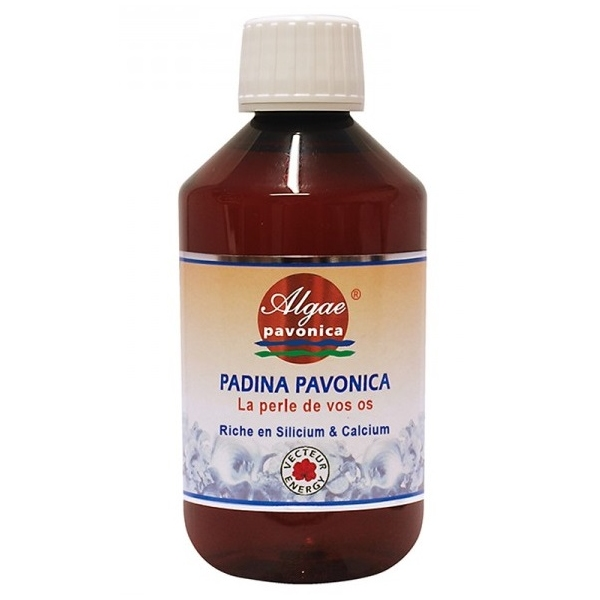 Algue Padina Pavonica - Flacon 300ml Vecteur energy