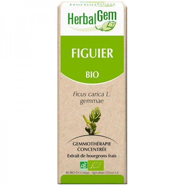 Figuier Bourgeon Bio -  Flacon 50ml Herbalgem